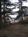 Пункт на d& x27 Coeur озера; Alene Айдахо Стоковая Фотография
