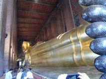 Пункт обслуживания школы массажа Wat Pho тайский Другая привлекательность Wat Pho Китайские каменные статуи украшенные сводами и  стоковые изображения