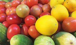Пункт фокуса выбора Vegetable цвета полный Стоковые Изображения
