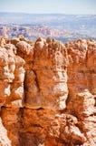 Пункт черной березы, каньон Bryce на солнечности стоковые изображения rf