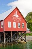 Пункт Hoonah пролива Аляски ледистый Стоковое Изображение