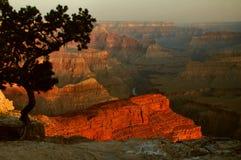 пункт hopi рассвета каньона грандиозный Стоковое Изображение