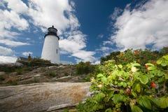 пункт pemaquid маяка Стоковое Изображение