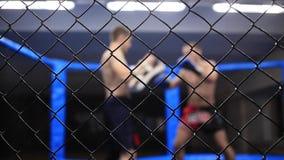 Пунши практики бойцов акции видеоматериалы
