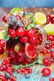 Пунш плодоовощ Sangria Стоковые Изображения