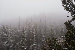 Пурга в горах Стоковые Изображения RF