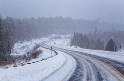 Пурга на Algonquin в зиме стоковые фото