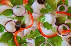 Пурпурный или зеленый базилик, Ruccola, кольца пурпурного лука, красный сладкий перец, чеснок, на белой предпосылке Рамка от свеж стоковая фотография rf