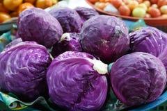 Пурпуровая капуста Стоковые Изображения
