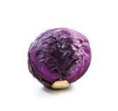 Пурпуровая капуста Стоковая Фотография RF