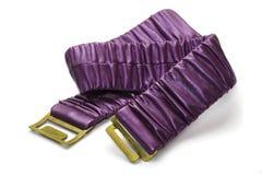 пурпуровая планка Стоковая Фотография