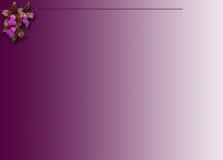 Пурпуровая предпосылка орхидеи Стоковое Изображение