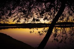 пурпуровое небо Стоковое Фото
