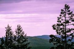 пурпуровое небо Стоковые Изображения RF