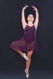 пурпурово Стоковое Изображение RF
