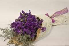 пурпурово Стоковое Фото
