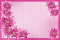 Пурпуровые лилии иллюстрация вектора