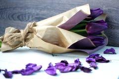 пурпуровые тюльпаны стоковое изображение