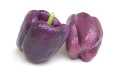 Пурпуровый перец красотки Стоковое Изображение