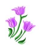 пурпуровый тюльпан Стоковая Фотография