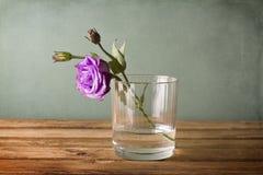 Пурпуровый цветок в стекле воды Стоковая Фотография RF