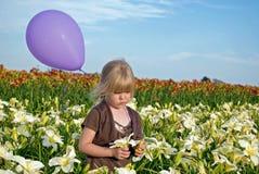 пурпур воздушного шара Стоковые Изображения RF