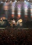 пурпур глубоко в реальном маштабе времени Кипра Стоковые Фото