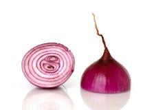 пурпур лука Стоковое Изображение