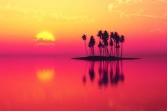 Пурпур острова кокоса стоковые изображения