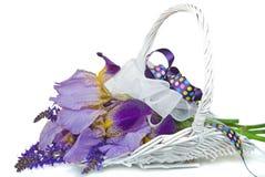 пурпур радужки букета Стоковое фото RF