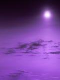 пурпур рая Стоковые Фотографии RF