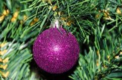 пурпур рождества bauble Стоковое Изображение RF