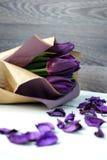 Пурпур тюльпанов: поздравления, день ` s женщин 8-ое марта международный, день ` s валентинки 14-ое февраля, праздник Стоковое Изображение