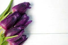 Пурпур тюльпанов: поздравления, день ` s женщин 8-ое марта международный, день ` s валентинки 14-ое февраля, праздник Стоковые Изображения RF