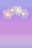 пурпур цветка предпосылки Стоковые Фотографии RF