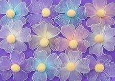 пурпур цветка предпосылки Стоковая Фотография
