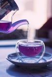 Пурпур чая Стоковые Изображения