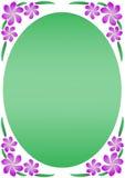 пурпур frangipani граници флористический Стоковые Фото