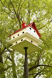 пурпур martin birdhouse Стоковое фото RF