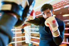 Пусковые площадки уверенно боксера пробивая на кольце Стоковое Фото