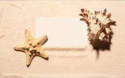 Пустая белая карточка посещения с морскими звёздами и seashell на песке Стоковое Изображение