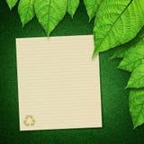 пустая бумага листьев зеленого цвета рециркулирует Стоковое Изображение RF