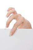 пустая бумага листьев руки Стоковые Фото