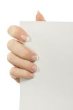 пустая бумага листьев руки Стоковые Изображения RF