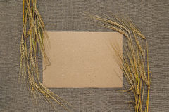 Пустая бумага с колосками пшеницы Стоковые Изображения