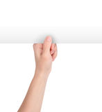 пустая бумага удерживания руки вверх по белизне Стоковое фото RF