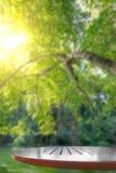 Пустая деревянная столешница и зеленая нерезкость природного источника Стоковые Изображения RF