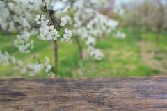Пустая деревянная таблица палубы Стоковое Изображение