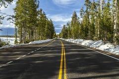 Пустая дорога внутри Йеллоустон стоковые изображения rf