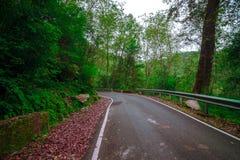 Пустая дорога в горе стоковая фотография rf
